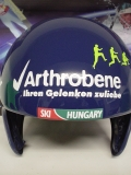 arthrobene004